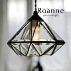 1灯ペンダントライト Roanne ガラス キッチン LED レトロ