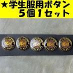 学生服用表ボタン ガラスボタン エポキボタン 釦 釦(ボタン)セット RRIVAX/パープル