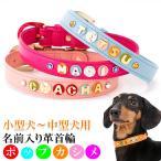 犬の首輪 犬首輪 小型犬用 名前入り首輪ポップカシメ SMサイズ