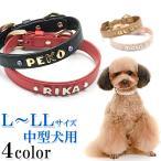 犬の首輪  犬首輪 中型犬用 オーストリッチ型押しイニシャル首輪 カシメ L、LLサイズ