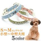 犬の首輪  犬首輪 小型犬中型犬用 ホワイトベーシックイニシャル首輪  カシメ SMサイズ