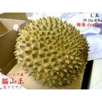 ドリアン 猫山王 榴蓮 durian マレーシア産 生L玉(予約販売)