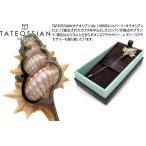 TATEOSSIAN タテオシアン メカニカルアニマルズ シェルラペルピン(ブランド ブローチ)(ポイント10倍)