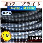 ショッピングLED LEDテープライト 調光可能 100V 1M 昼光色 間接照明 棚照明 内装照明 インテリア 明るい 二列式 CY-TPDC1M
