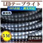 ショッピングLED LEDテープライト 調光可能 100V 5M 昼光色 間接照明 棚照明 内装照明 インテリア 明るい 二列式 CY-TPDC5M
