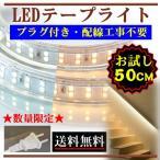 LEDテープライト コンセントプラグ付き 100V 50CM 配線工事不要 簡単便利 電球色 昼光色 激安 間接照明 棚照明 二列式 お試し CY-TPX0M