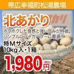 【帯広幸福町松浦農場】北あかり 特M玉10kg・1箱