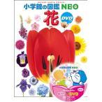 小学館の図鑑NEO 花 DVD付き