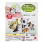 ミニチュアプレミアムドッグコレクション Vol.1 MINIATURE PREMIUM DOG COLLECTION 全12種フルコンプセット ビーム ガチャポン チョコエッグ フィギュア 犬 いぬ