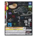 松本人志 世界の珍獣 第二弾 5種ノーマルコンプセット