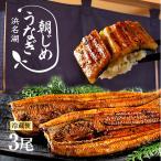 うなぎ 国産 特大 朝じめ 特選 鰻 蒲焼き 3尾セット 送料無料