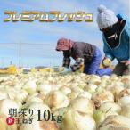 早割特価8%OFF中♪ たまねぎ 浜松篠原産 新玉ねぎプレミアムフレッシュ10kg 辛くない 玉ねぎ! タマネギ 玉葱