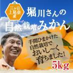 特選!無農薬三ヶ日みかん 5kg有機栽培40年堀川さん渾身のみかん!【送料無料】三ケ日みかん
