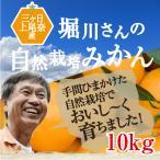 特選!無農薬三ヶ日みかん 10kg有機栽培40年堀川さん渾身の三ケ日みかん!【送料無料】