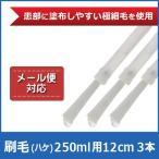 水虫薬 エフゲン 250ml サイズ用 刷毛(ハケ) 3本 セット