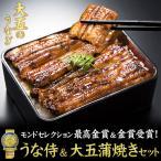 うなぎ 蒲焼 うな侍&大五蒲焼きセット 鰻 ウナギ 土用の丑の日 丑の日 土用 土用丑 送料無料