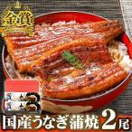 国産 うなぎ 長蒲焼2尾セット 2人前 鰻 ウナギ ギフト プレゼント 土用の丑の日 内祝い 送料無料