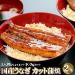 国産うなぎ蒲焼 カット蒲焼き2食セット 鰻 ウナギ 父の日 ギフト プレゼント 送料無料