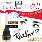 おはよう日本で紹介 まちかど情報室 Reallyyy リアリー アイブロウ メイク ツケマユゲ マユエク 短いまゆ 薄まゆ 眉毛 まゆ毛 マロ眉 ファイバー まゆげ