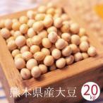 大豆 熊本県産 ふくゆたか 20kg袋入り 国産大豆 味噌 豆乳 豆腐用 豆腐作り 味噌作り