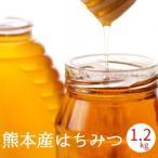 国産 はちみつ 600g x2 熊本県産 非加熱 濃熟蜂蜜 国産 純粋はちみつ ミカン蜜 みかん蜜 瓶入り プレゼント ギフト