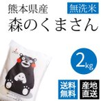 森のくまさん 無洗米 2kg 熊本県産 令和2年産 くまモン米 ギフトとして当店人気1位のお米 精米