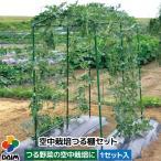 第一ビニール 空中栽培つる棚セット TDS-1.8-H
