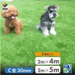 まるで本物のような質感 ふかふかで気持ちがいい人工芝  期間限定 特別価格 人工芝 C型 芝丈30mm 2m 4mを1本 2m 5mを1本の2本セット