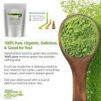 Matcha Green Tea Powder 5 Kgs (11 Lbs) - CERTIFIED ORGANIC - Bulk