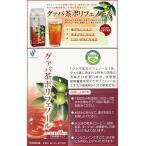 グァバ茶ポリフェノール500ml ×超お得24本セット《飲みやすい、簡単、ダイエット、糖、加齢臭、シミ・くすみ》
