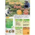 宮古ビデンス ピローサ茶 90g(3g×30袋)8個セット
