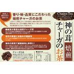 神の茸チャーガのお茶 焙煎チャーガ茶 (2g×30包)×6個セット