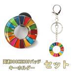 SDGs ピンバッジ バッジ 国連 本部限定 正規品 日本未発売 2個 セット
