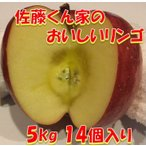 リンゴ フジ 5kg 秋田県産 贈り物 贈答 お歳暮   佐藤くん家のおいしいリンゴ 5kg 14個入り 送料無料