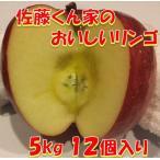 リンゴ フジ 5kg 秋田県産 贈り物 贈答 お歳暮  佐藤くん家のおいしいリンゴ 5kg 12個入り 送料無料