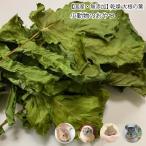 小動物のおやつ 国産 無添加 乾燥 大根の葉 5g 乾燥野菜 だいこん 葉 無着色 ドライベジタブル  小動物 うさぎ ハムスター【DBP】