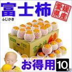 富士柿 お得用 10kg