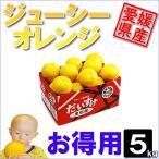 其它 - ジューシーオレンジ お得用5kg