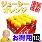 ジューシーオレンジ お得用10kg
