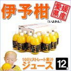 伊予柑(いよかん)ジュース12本