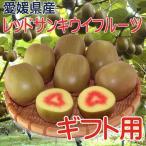 奇異果 - レッドサン キウイフルーツ ギフト用3kg