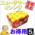 ニューサマーオレンジ お得用 5kg