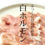焼肉用 白ホルモン 200g 味噌たれ付き / 黒毛和牛小腸