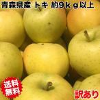 訳あり 希少品種 青森県産トキりんご 糖度保証 サイズいろいろ 約10kg 2450円 ※沖縄離島は除く