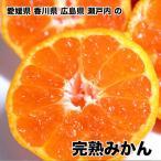香川県産完熟みかん Mサイズ 約10kg