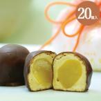 和菓子 詰め合わせ 珠の栗 20個入 栗 チョコ お菓子 お取り寄せ ギフト お供え お供え物 老舗 高級