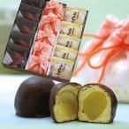 和菓子 詰め合わせ 「みのり」こうしん5個珠の栗5個忍