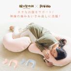 眠れる森の妊婦の快眠 抱っこされ枕 送料無料 U字型 30日間返品保証 日本製