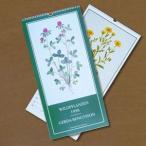 カレンダーブック野の花チャートコレクション