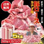背肉 - 只今の注文で最長14日後の届け 送料無料 カナダ産豚ロース細切れ・切れ端・訳あり500gX10袋入 半冷凍・完全冷凍を選んだ場合,凍結していない場合があります
